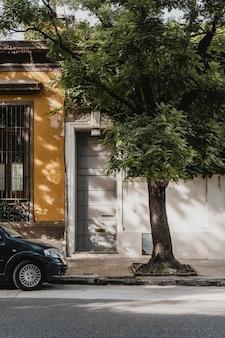 Vooraanzicht van stadshuis met auto en boom