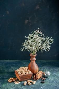 Vooraanzicht verse pinda's op donkerblauwe noot hazelnoot cips kleurenfoto snack schelp walnoot