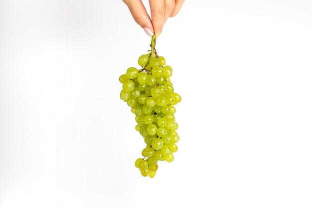 Vooraanzicht verse sappige druiven zacht groen ed op de witte achtergrond