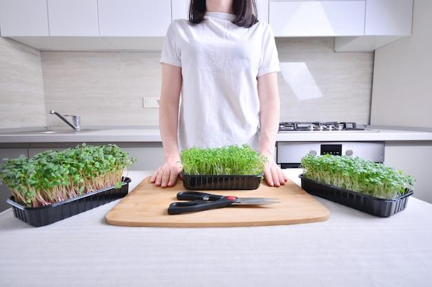 Voorbereiding voor het bereiden van een gerecht met micgrogreens