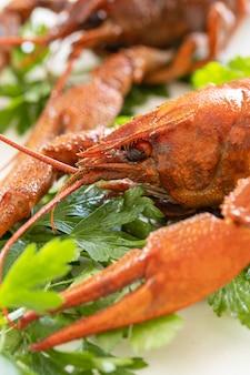 Voorgerecht eiwit gekookte langoesten close-up en peterselie bladeren