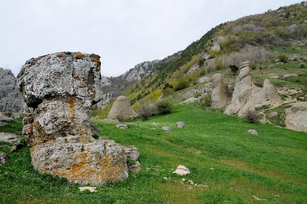 Voorgrond enorme steen bedekt met mos, bomen aan de kant van de berg, groen gras in de vallei