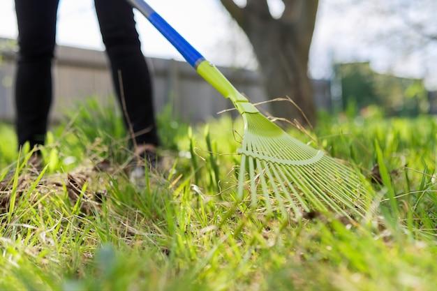 Voorjaarsschoonmaak in de tuin, close-uphark die groen gras schoonmaakt van droog gras en bladeren