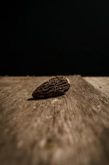 Voorraadfoto van morille-paddestoel op houten lijst aangaande zwarte achtergrond.