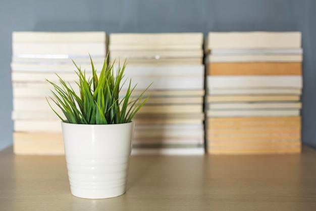 Voorzijde van de kleine plantendecoratie boekstapelachtergrond vervagen op bureau