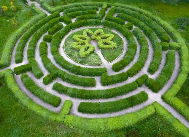 Vormsnoei-tuin in de vorm van een labyrint, in de botanische tuin grishka in kiev. Premium Foto