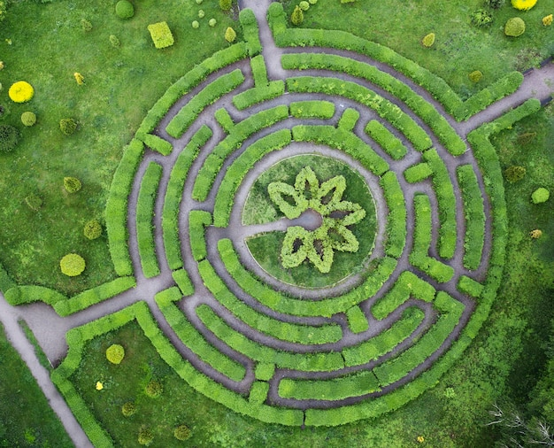 Vormsnoei-tuin in de vorm van een labyrint, in de botanische tuin grishka in kiev.