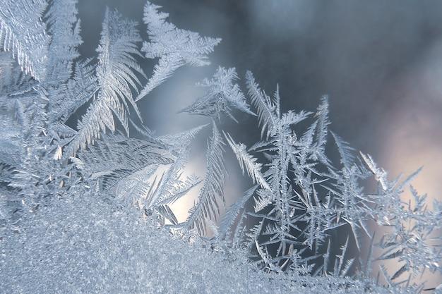 Vorstpatronen op winterglas