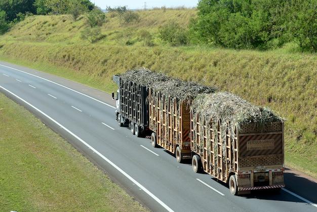 Vrachtwagen die suikerriet op de weg vervoert