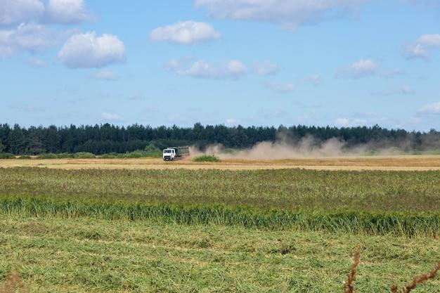 Vrachtwagen geladen met gierst op het platteland, rijdend over het veld.