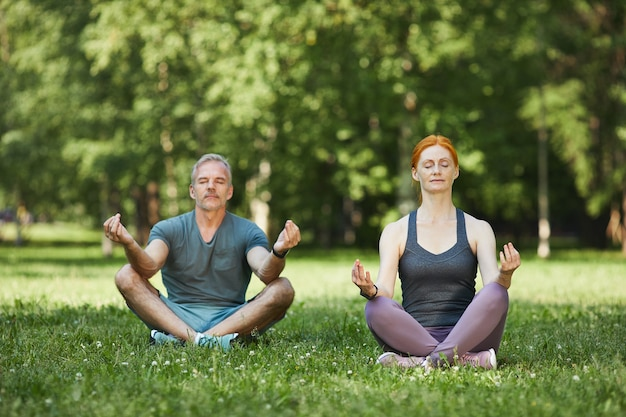 Vreedzaam volwassen paar geconcentreerd op geest tijdens meditatie zittend met gekruiste benen in prachtig park