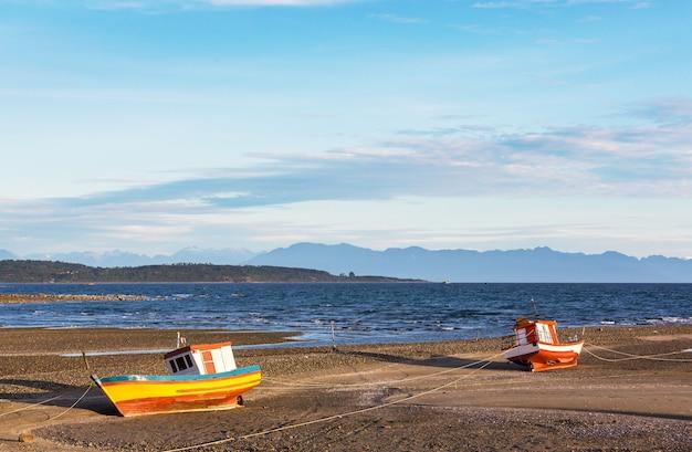 Vreedzame oceaankust langs carretera austral, patagonië, chili