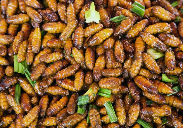Vreemd insecten gefrituurd voedsel smaakt goed eten uit thailand.