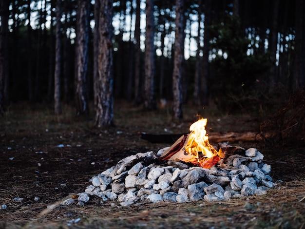 Vreugdevuur in de natuur in de buurt van de avondrust van het bos