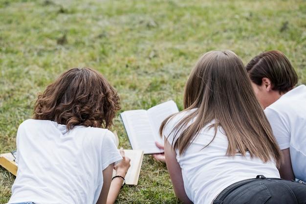 Vrienden die met boeken bestuderen die in park liggen