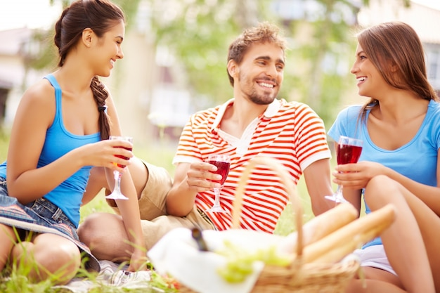 Vrienden genieten van picknick op het platteland