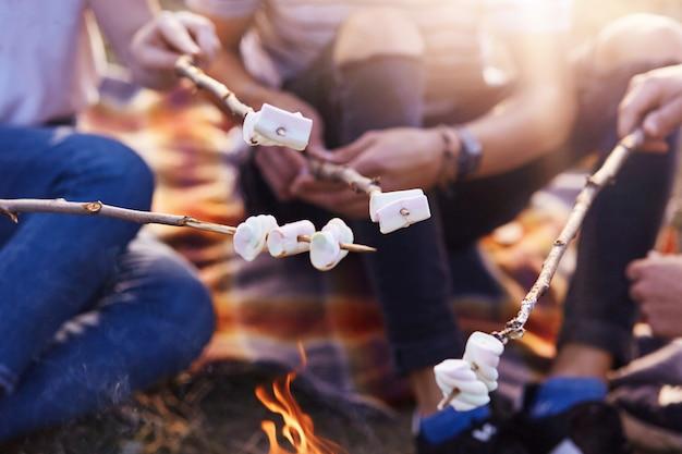 Vrienden roosteren zoete marshmallows op vreugdevuur, groep mensen die samen vrije tijd doorbrengen