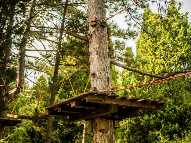 Vrije tijd, sportvakantie activiteit in pijnbomenbos touwpark.