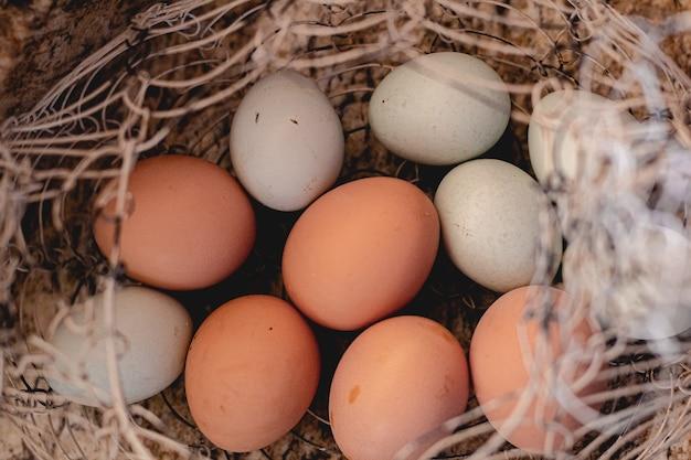 Vrije uitloop kippeneieren in een metalen mand met een bovenaanzicht