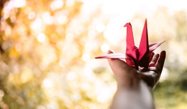 Vrijheid, verbeelding, geestelijke gezondheid en creativiteit concept. geopende hand guesture met paper origami bird. positieve geest, vredig, genieten en levensfilosofie