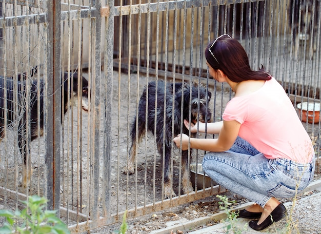 Vrijwilliger meisje in de kinderkamer voor honden. opvang voor zwerfhonden.