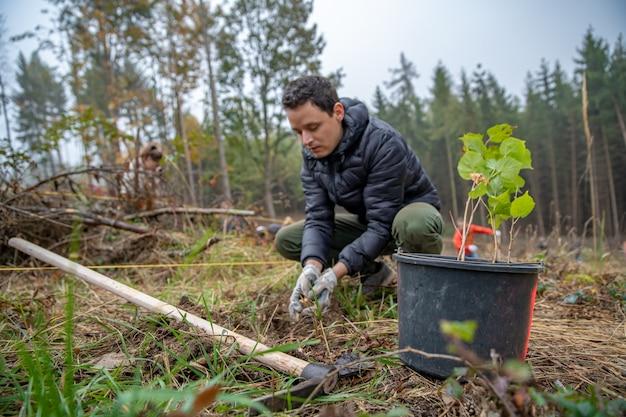 Vrijwilliger plant bomen om het bos te herstellen na een verwoestende wind