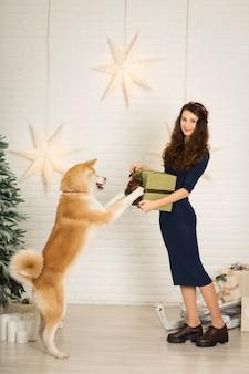 Vrolijk kerstfeest en een gelukkig nieuwjaar! het meisje geeft kerstcadeau in doos aan haar hondenras akita inu