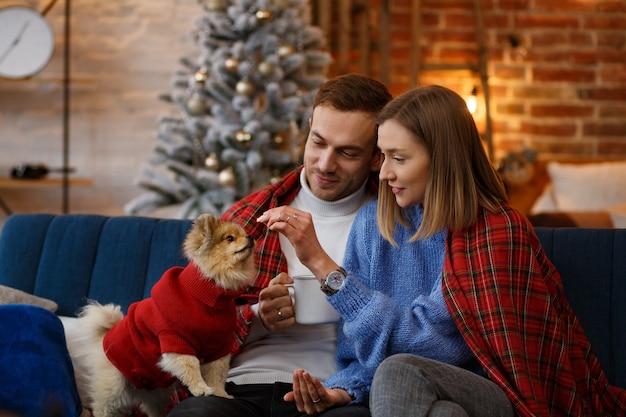 Vrolijk kerstfeest. gelukkig jong koppel spelen met pommeren spitz hond zitten in de buurt van mooie kerstboom thuis. wintervakantie, kerstvieringen, nieuwjaarsconcept. samen tijd doorbrengen.