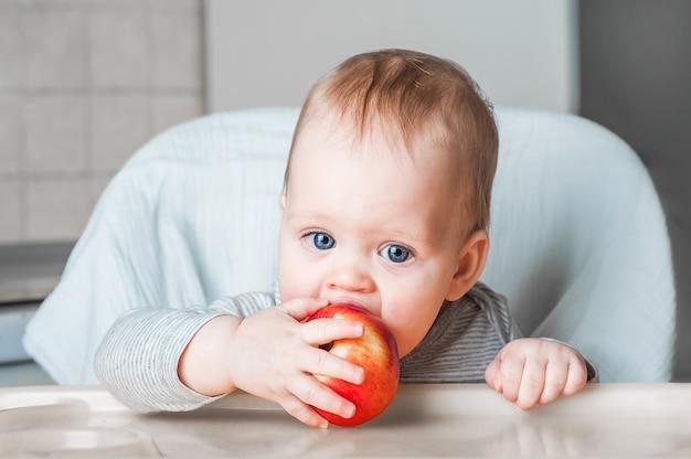 Vrolijk kind eten rode appel, vitamines. portret van gelukkige jongen in stoel close-up. lokken.