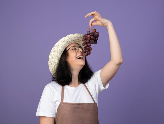 Vrolijke jonge brunette vrouwelijke tuinman in optische bril en uniform dragen tuinieren hoed houdt en kijkt naar druiven geïsoleerd op paarse muur