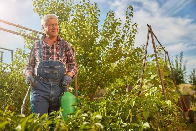 Vrolijke ouder wordende man met een spuittank terwijl hij op een zonnige dag planten in zijn tuin besprenkelt