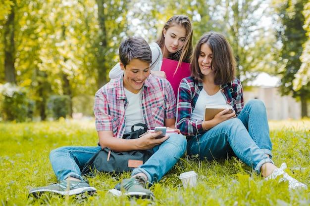 Vrolijke vrienden met telefoon op de weide