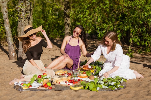 Vrolijke vrouwen rusten in de natuur met wijn mooie vrouw in zonnebril hebben plezier op picknick...