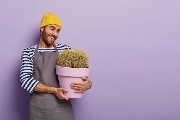 Vrolijke zorgzame bloemist-decorateur houdt pot met grote cactus
