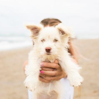 Vrouw bij de hond van de strandholding