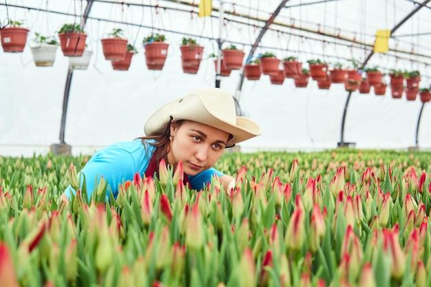Vrouw bloemist in kas onderzoekt groeiende ongeopende rode tulpen