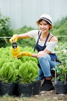 Vrouw cipressen planten water geven