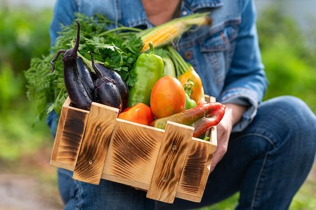 Vrouw demonstreert houten kist met verschillende groenten groenten plukken concept