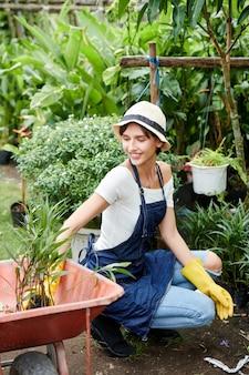 Vrouw die bloemen in achtertuin plant