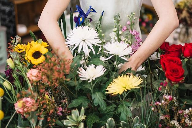 Vrouw die bloemen plant snijdt