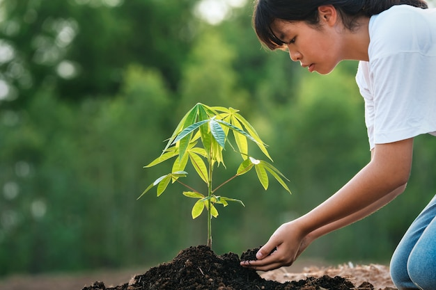 Vrouw die boom in tuin plant. concept eco