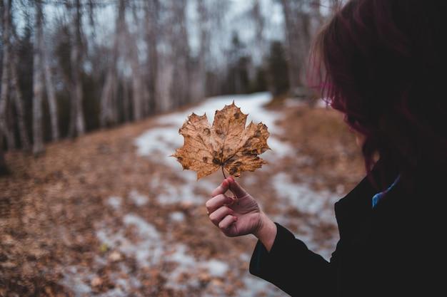 Vrouw die bruin esdoornblad houdt