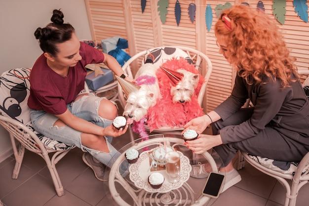 Vrouw die cupcakes eet. liefhebbende eigenaren van schattige witte honden die cupcakes eten om hun verjaardag te vieren