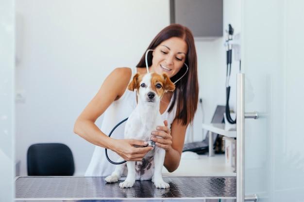 Vrouw die een onderzoek met een stethoscoop op een gezonde hond doet