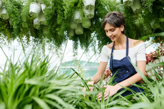 Vrouw die geniet van het werken met planten