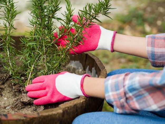 Vrouw die haar tuin behandelt