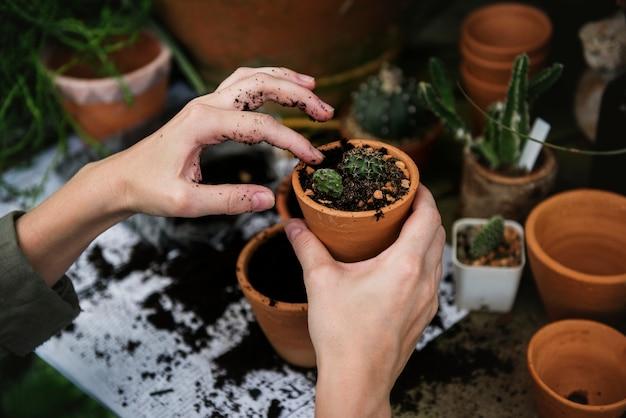 Vrouw die in een tuinierende winkel werkt