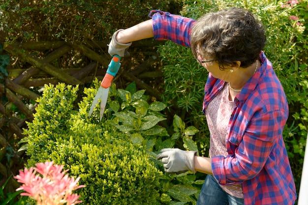 Vrouw die in haar mooie tuin tuiniert.