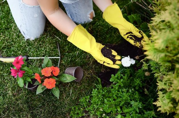 Vrouw die in handschoenen bloemen in de tuin plant