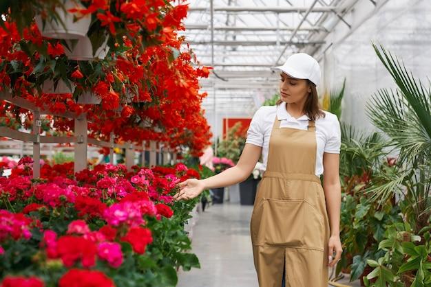 Vrouw die in schort de groei van bloemen bij oranjerie controleert